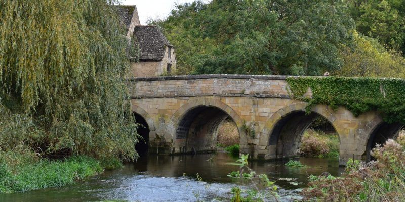 Duddington Bridge in late summer, partially covered in ivy, water flowing underneath and a drooping willow on the bank